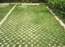 高承载植草地坪